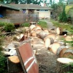 Click here to see different ways to purchase firewood.